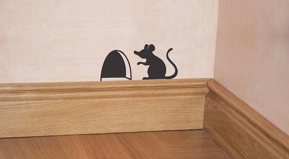 برچسب سوراخ موش